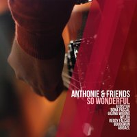 So Wonderful — Anthonie
