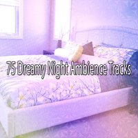 75 Dreamy Night Ambience Tracks — Ocean Sound