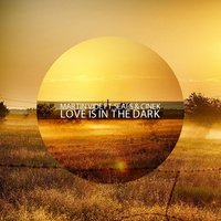 Love Is in the Dark — Martin Vide