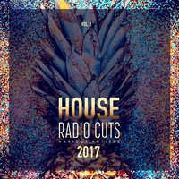 House Radio Cuts, Vol. 1 — сборник