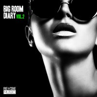 Big Room Diary, Vol. 2 — сборник
