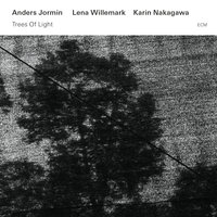 Trees Of Light — Lena Willemark, Anders Jormin, Karin Nakagawa