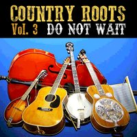 Do Not Wait — Jimmie Rodgers, Tex Ritter, Alfred Karnes, Kentucky Ramblers, Ernest Phipps