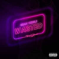 Wasted — Sean Tizzle