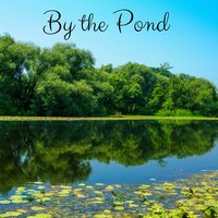 By the Pond — Rain Sounds