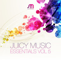 Juicy Music Essentials Vol. 5 — сборник