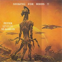 "Seeking for Birds — Peter ""Hithouse"" Slaghuis"