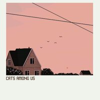 s/t — Cats Among Us