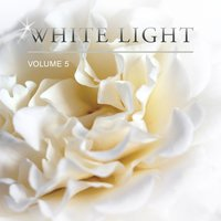 White Light, Vol. 5 — сборник