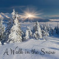 A Walk in the Snow — Yoga Sounds