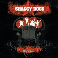 No Covers — Shaggy Dogs