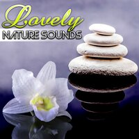 Lovely Nature Sounds - Total Relax, Good Mood, Home Spa, Massage Music, Touch Therapy, Reiki Healing, Inner Peace — Lovely Nature Music Zone