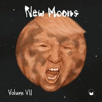 New Moons Vol. VII — сборник