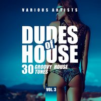 Dudes of House (30 Groovy House Tunes), Vol. 3 — сборник
