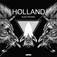 Holland Electronic — сборник