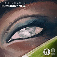 Somebody New - Single — Kalide, STALKER, Kalide, Stalker