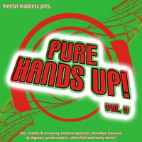 Mental Madness Pres. Pure Hands Up! Vol. 3 — Mental Madness