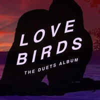 Lovebirds: The Duets Album — сборник