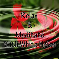Relax & Meditate With White Noise — Relaxing Mindfulness Meditation Relaxation Maestro, Relaxing Music Therapy, Relaxing Rain Sounds, Relaxing Meditation Songs Divine, Relaxing Music Therapy, Relaxing Rain Sounds, Relaxing Meditation Songs Divine, Relaxing Mindfulness Meditation Relaxation Maestro