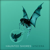 Viscera — Haunted Shores