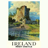 Ireland — Fly Project