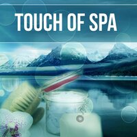 Touch of Spa - Healing Massage Music, New Age for Healing Through Sound and Touch, Pacific Ocean Waves for Well Being and Healthy Lifestyle, Water & Rain Sounds, Serenity Spa — Spa Healing Collection