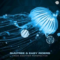 From Another Perspective — Suntree, Easy Riders