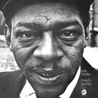 Hate To See You Go — Little Walter