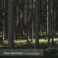 Pieces of Pure Freedom — Elise Bechstein