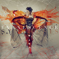 Synthesis — Evanescence