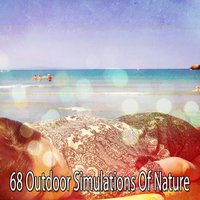 68 Outdoor Simulations Of Nature — White Noise for Baby Sleep