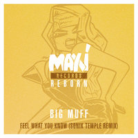 Feel What You Know — Big Muff