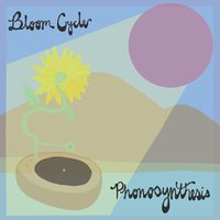 Phonosynthesis — Bloom Cycle