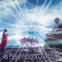 46 Presentations Of Nature — Lullabies for Deep Meditation