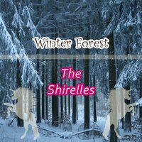 Winter Forest — The Shirelles