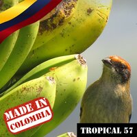 Made In Colombia / Tropical / 57 — сборник