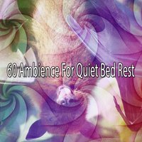 60 Ambience For Quiet Bed Rest — Nature Sounds Nature Music