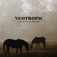Equestrienne — Neotropic