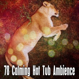 78 Calming Hot Tub Ambience — Bedtime Baby