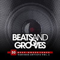 Beats And Grooves (30 Deep-House Tunes), Vol. 1 — сборник