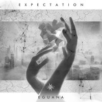 Expectation — Eguana