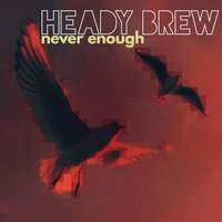 Never Enough — Heady Brew