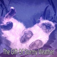 The Gift Of Stormy Weather — Thunderstorms