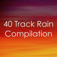 0 Worries: 40 Rain Track Compilation — White Noise Nature Sounds Baby Sleep, Soothing White Noise for Infant Sleeping and Massage, Crying & Colic Relief, Baby Sleep Lullaby Academy, Baby Sleep Lullaby Academy, White Noise Nature Sounds Baby Sleep, Soothing White Noise for Infant Sleeping and Massage, Crying & Colic Relief