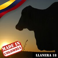 Made In Colombia / Llanera / 18 — сборник