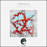 Where Are You — Trebonius
