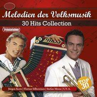 30 Hits Collection - Melodien der Volksmusik — сборник