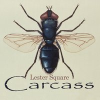 Carcass — Lester Square
