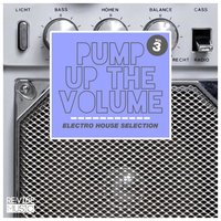 Pump up the Volume - Electro House Selection Vol. 3 — сборник