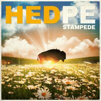 Stampede — (hed) p.e.
